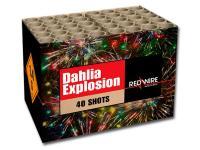 Compound van RedWire vuurwerk met heldere dahlia effecten en blink. Online te bestellen bij Xena Vuurwerk in Ede