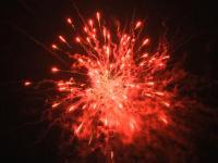 Red Peony 25 schots festival cake van RedWire. Online te bestellen bij Xena Vuurwerk in Ede