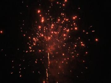 Red Glitter Peony 25 schots festival cake van RedWire. Online te bestellen bij Xena Vuurwerk in Ede