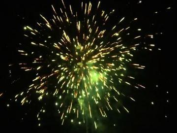 Green Glitter Peony 25 schots festival cake van RedWire. Online te bestellen bij Xena Vuurwerk in Ede