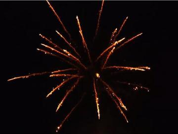 Gold Glitter Willow 25 schots festival cake van RedWire. Online te bestellen bij Xena Vuurwerk in Ede